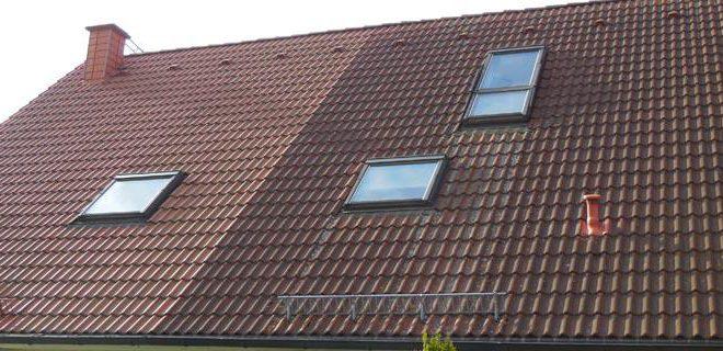 Dachflächenreinigung